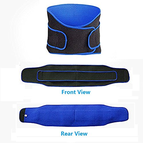 Back Support Brace – Exercise Bands