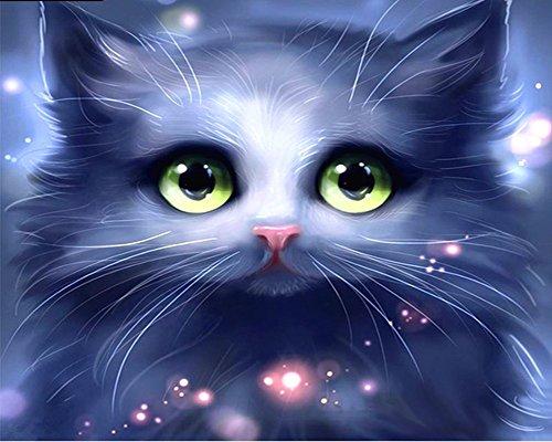 Wowdecor DIY Malen nach Zahlen Kits Geschenk für Erwachsene Kinder, Malen nach Zahlen Home Haus Dekor - Märchen Grün Augen Katze 40 x 50 cm Rahmen