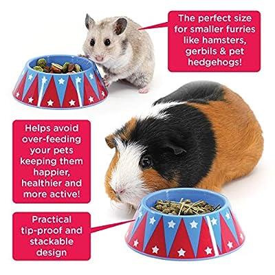 HAYPIGS Guinea Pig Bowl - Circus Themed Junior FOOD CRAVING TAMER Mini Guinea Pig Food Bowl - Hedgehog Bowl - Hamster Bowl - Small Animal Food Bowl by HAYPIGS