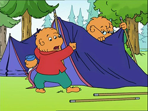 the-berenstain-bears-white-water-adventure