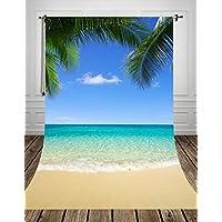 150x200cm Toile de fond pour bébé Photos d'été Photographie Studio Nouveau-nés Toiles de fond Hawaii Beach Blue sky Feuille de palmier D-8538(FR)
