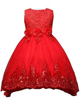 [Patrocinado]Fantast Costumes Niña Flores de Encaje Formal Vestido de Fiesta de la Princesa de la Boda