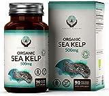Algas Marinas Orgánicas 500mg [90 cápsulas de Algae] | Fuente de Yodo Natural | Sin OGM y Hecho en el Reino Unido | Puro - Sin Ingredientes/Rellenos adicionales