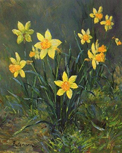 Butterworth Fine Art schottischen Grußkarte-Narzissen bei Drummie - Daffodil Fine Art