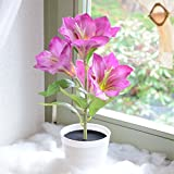 Deko LED Lilie weiß lila beleuchtet Batterie Blumentopf Kunstpflanze Blume 42cm Kunstpflanze Kunstblume mit Licht Lichter Tischlampe Tischleuchte