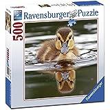 Ravensburger - Puzzle Cachorro C Cuadrado, 500piezas (15238)