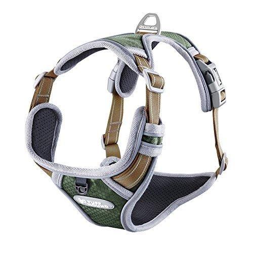 Pettom Hundegeschirr Geschirr für Hunde No Pull Powergeschirr mit Heavy Duty Griff für Hundetraining Oder Walking (L, Green)