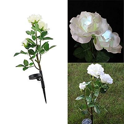Solar Gartenstecker LED Blume Licht Deko Weiß Rose Gartenlampe Gartenleuchte von HD - Lampenhans.de