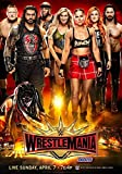 WWE Wrestlemania 35 April 2019 Poster Print Ronda Rowsey 101 A3