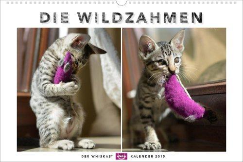 whiskas-katzenkalender-2015