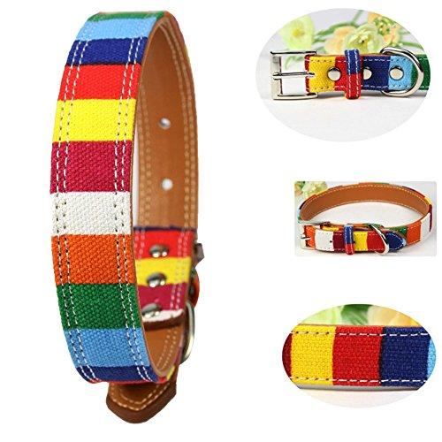 Demiawaking Haustier Regenbogen Form Leder Halsband Verstellbare Kragen Schnalle Hals (S)