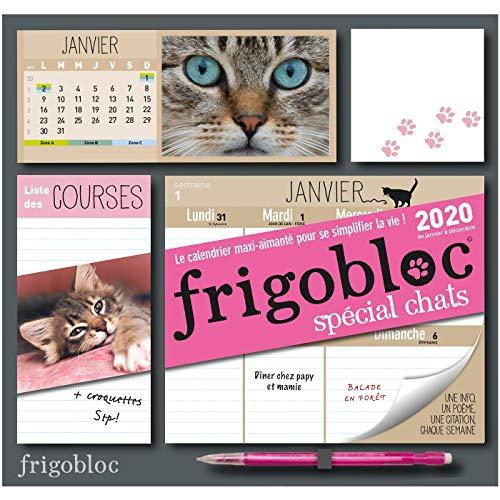 Frigobloc Chats 2020 - Calendrier d'organisation familiale (de janvier à décembre 2020): S'organiser n'a jamais été aussi simple ! par Play Bac