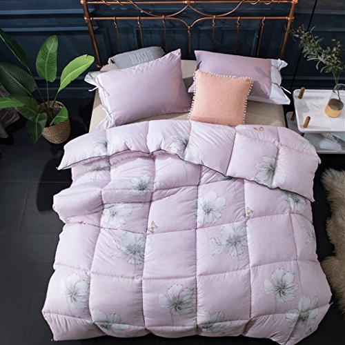 MMM Quilt Winter Thicker Student Dormroom Quilt individuel 4kg Gardez le printemps chaud et le ponçage d'automne Quilts ( Couleur : Rose , taille : 220*240cm(3.5kg) )