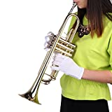 Trumpet Bb B flat Brass Exquisite with Gloves Mouthpiece