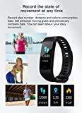 Aberdeen CTY5 Smart Band with Color OLED Screen with Heart Rate Monitor, BP Monitor, Pedometer and Accurate Fitness Activity Tracker Amazon Rs. 1449.00