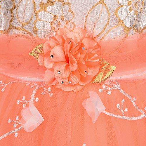 Wish Karo Baby Girls Party Wear Frock Dress DN fe2172peah-3-4 Yrs