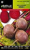 Semi Ortaggi Di Batlle - Barbabietola Detroit 2 (500 Seeds)