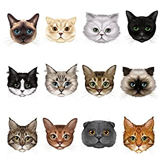 12 Cute Cat Face Window Clings by Articlings – 12 Different Breeds - Non-adhesive Stickers - Quickly Decorate and Brighten your Windows