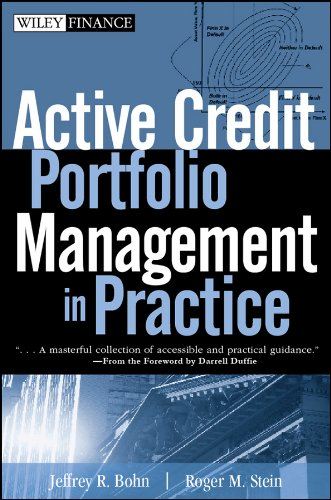 Steine Portfolio (Active Credit Portfolio Management in Practice (Wiley Finance))