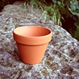 Small terracotta plant pots (pack of 10) 80mm diameter x 70mm high