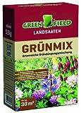 Greenfield 63705 Gruenmix 500 g pour Env. 30 qm Mélange d'engrais verts