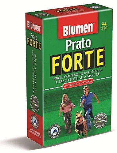 PRATO FORTE BLUMEN - SCATOLA KG 1