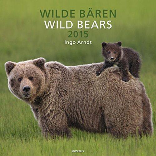 Knesebeck Wild Bears 2015