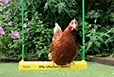 Durvet The Chicken Swing Fun Activity Swinging Motion Adjustable Coop Size