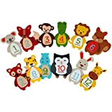 Pearhead First Year Monthly Milestone Felt Animal Photo Sharing Baby Belly Stickers, 1-12 Months By Pearhead