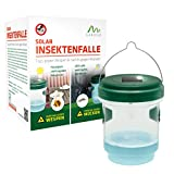 ᐅ Wespenfalle Solar 2 in 1 - 8