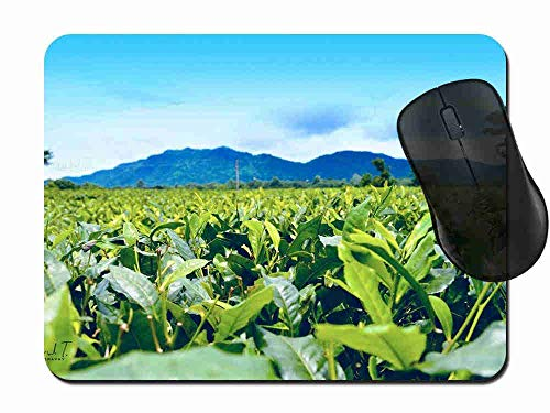 Gaming Mouse Pad Tea Estate Mountain Mousepad Non Slip Rubber Mouse Mat Rectangle Mouse Pads for Computers Laptop 1H429