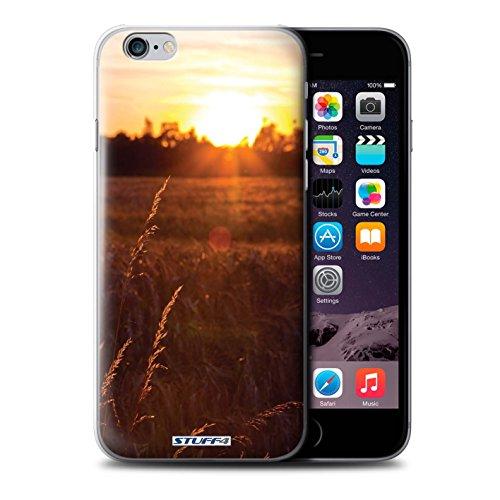 STUFF4 Phone Case / Cover for iPhone 6+/Plus 5.5 / Treeline Design / Sunset Scenery Collection Campo di coltura