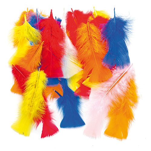 Baker Ross Plumas largas de Colores para Manualidades Que los Niños Pueden Añadir a Collages, Modelos, Sombreros y Disfraces (por Pack).