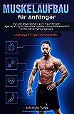 Muskelaufbau für Anfänger: Von der Couchpotato zum Traumkörper - egal ob im Gym oder ohne Geräte. Inklusive erstaunlich einfachen Ernährungstipps und exklusivem 3 - Tage Trainingsplan - Lifestyle Turbo