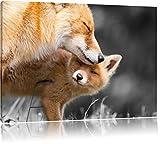 süße kuschelnden Füchse schwarz/weiß Format: 80x60 auf Leinwand, XXL riesige Bilder fertig gerahmt mit Keilrahmen, Kunstdruck auf Wandbild mit Rahmen, günstiger als Gemälde oder Ölbild, kein Poster oder Plakat