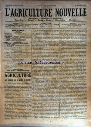 AGRICULTURE NOUVELLE (L') [No 560] du 11/01/1902 - AGRICULTURE PAR MARCHAND - BERTHOT - DISSARD ET TRONDE - HORTICULTURE PAR HENRY - VITICULTURE PAR GUILLON - ELEVAGE PAR DEMARTY ET MARTIN - LE BETAIL DANOIS PAR VACHER VARIETES PAR ROLLIN - LEGISLATION PAR LESAGE