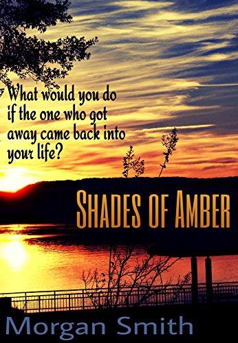 Shades of Amber (The DisEnchanted Series Book 1) (English Edition)