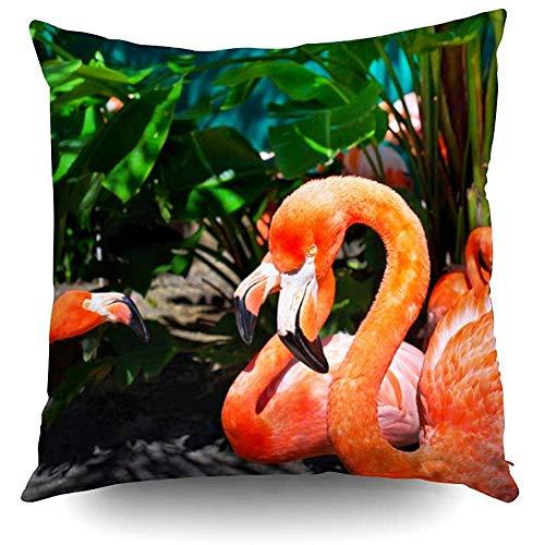 Ducan Lincoln Pillow Case 2PC 18X18,Square Dekokissenbezug Umfasst Schöne Flamingos Im Park Florida Ostern Beide Seiten Drucken Zip Kissenbezüge Kissen -