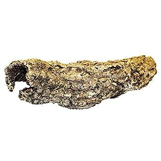ProRep Cork Bark Short Tube, Small 7
