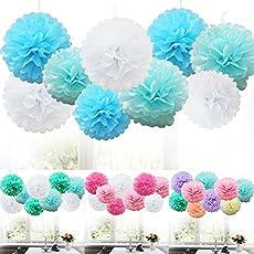 TtS 9 MIX Set Seidenpapier PomPoms PomPons Blumen Hochzeit Party Dekoration