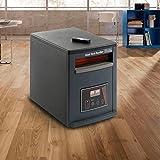 Calefactor purificador