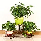 HZB Balcone europeo in ferro battuto per fiori, merletto verde, Chlorophytum, portabottiglie per fioriere