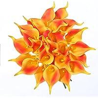 Suchergebnis Auf Amazon De Fur Hochzeit Dekoration Orange Kuche