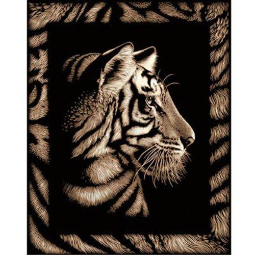 Oz International - PPGF301 - Jouet Premier Age - Scraper Tigre avec Frise