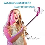 Handheld Wireless Microphone Portable Karaoke Machine for kids Christmas Gift and Family Party