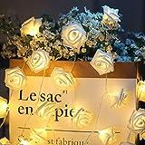 ELINKUME LED Rosen Lichterkette mit 20er Blumen, 2.5M/8,2 Füße Batteriebetrieben, Warmweiß Rosenblütenkette Romantische Atmosphäre Dekoration