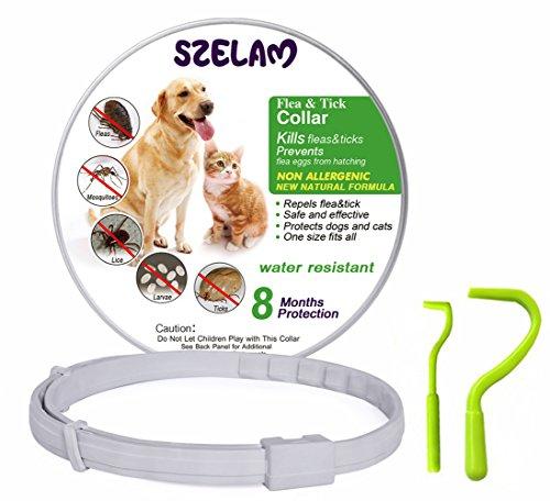 Collar de pulgas para perros 8 meses de protección Stop Bichos y picazón