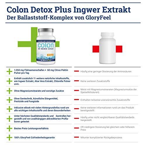 Colon Cleanse – 100 vegane Kapseln – Ballaststoff-Komplex mit Ingwer Extrakt und Flohsamenschalen – Laborgeprüft und ohne Zusätze hergestellt in Deutschland