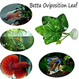 Berrose Künstlich Pflanzenblatt Hängematte Fischruhe Bett Tropisches Aquarium Dekor künstliche Deko Pflanzen Wasserpflanzen Aquariumpflanzen