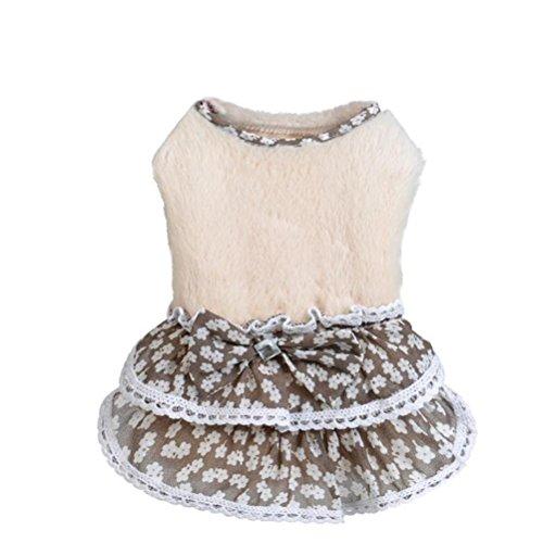 stier Rock, Warmes Haustier Kleid Bowknot Gem Pullover Rock Welpen Kleid Mädchen Hundekleidung (M, Beige) (Pudel-rock Kleider)